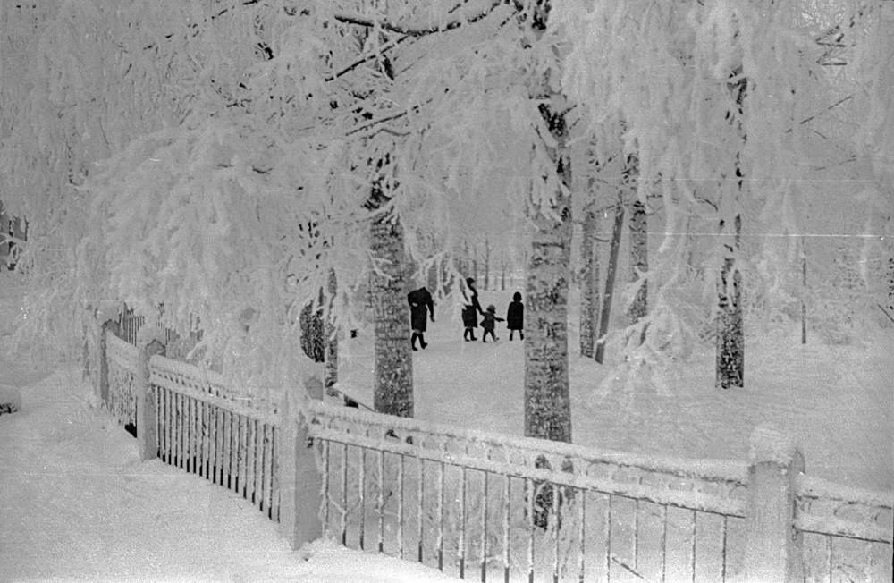 Рубцовская Вологда 1960-х. Кировский сквер