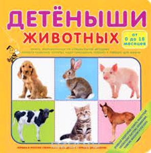 детеныши-животных