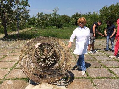 Памятник шляпе Волошина