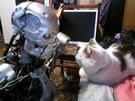 Терминатор против кота