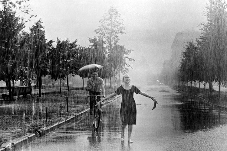 дождь6