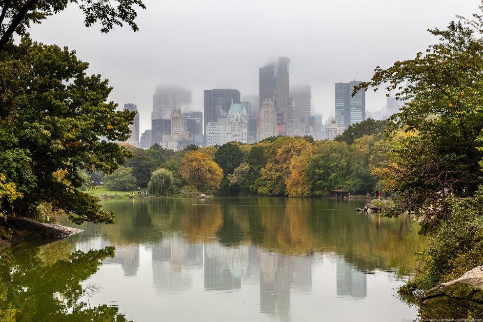 Книги, которые помогут уловить дух мировых столиц Нью-Йорк