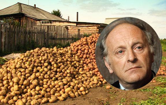 Картошка Бродского