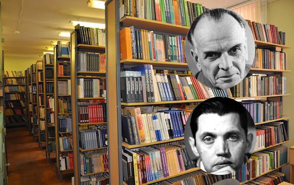 библиотеки паустовского и рождественского