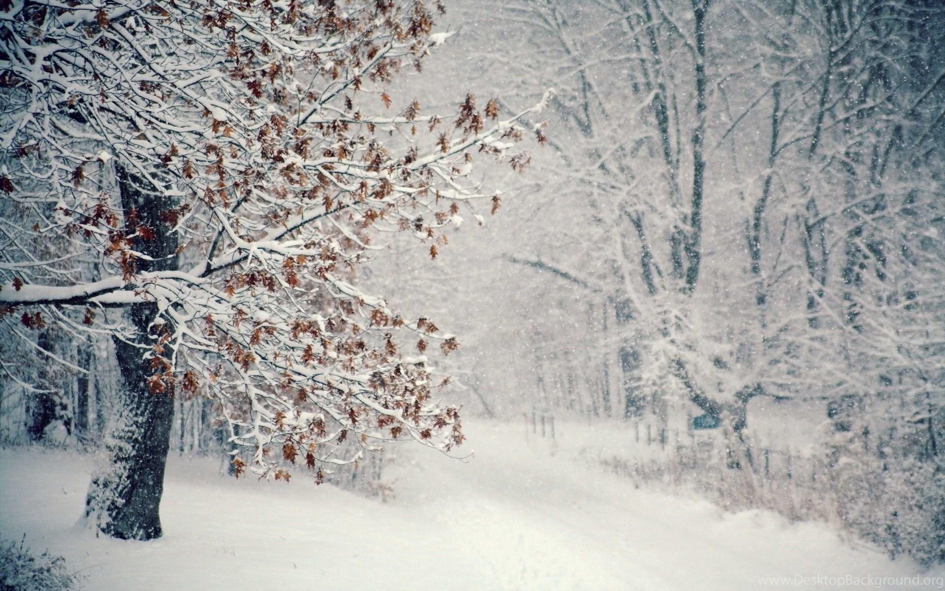5 цитат о русской зиме