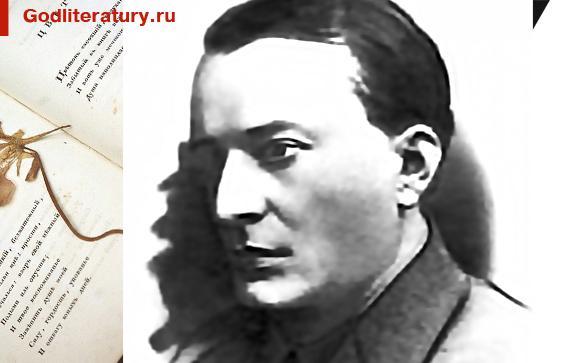 Мои-любимые-поэты Павел Булыгин