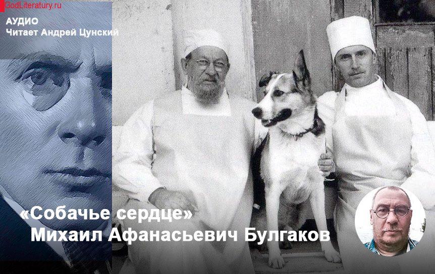 'Собачье сердце ' Михаил Булгаков. Аудио / godliteratury.ru